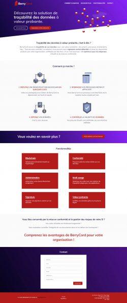 Page d'accueil de Berrycord développée par Reactic sous WordPress